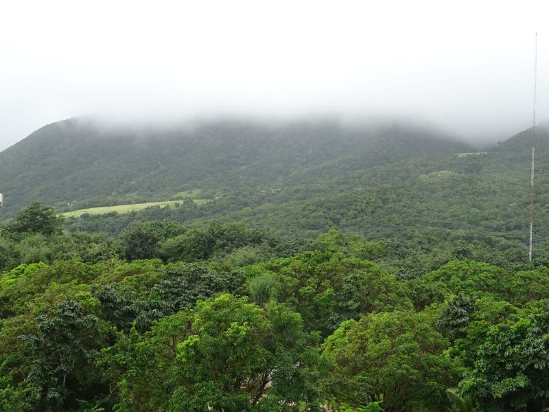 109a St Kitts Foggy View